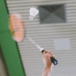 Wo finde ich Infos zur Badminton Technik?